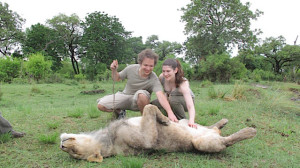 georgia-and-lions[1]