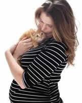 pregnantcats